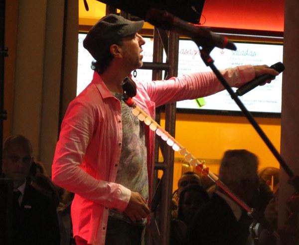 zeca baleiro show artista músico